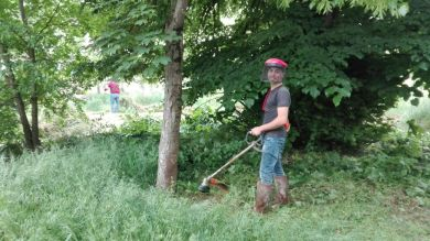 Liberando le piante dall'erba e preparando il terreno per la BCS