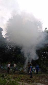Il grande fumo mentre abbiamo bruciato i piccoli rami e l'erba.