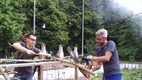 taglio legna (5)